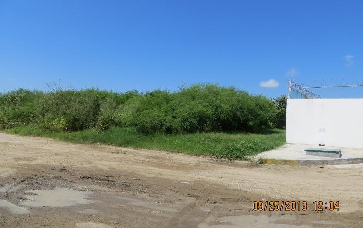 Foto de terreno comercial en renta en  , comercial fimex, altamira, tamaulipas, 1136087 No. 04