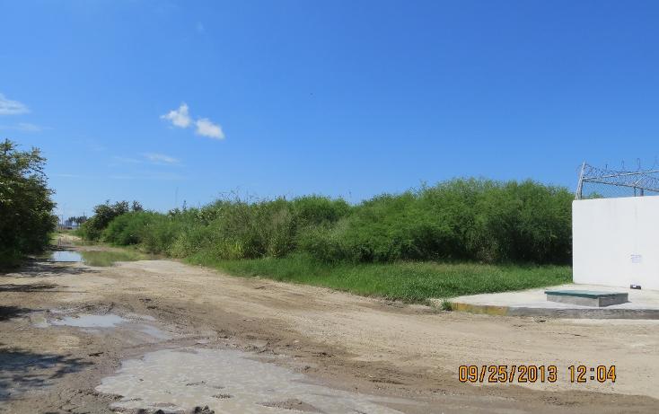 Foto de terreno comercial en renta en  , comercial fimex, altamira, tamaulipas, 1136087 No. 05