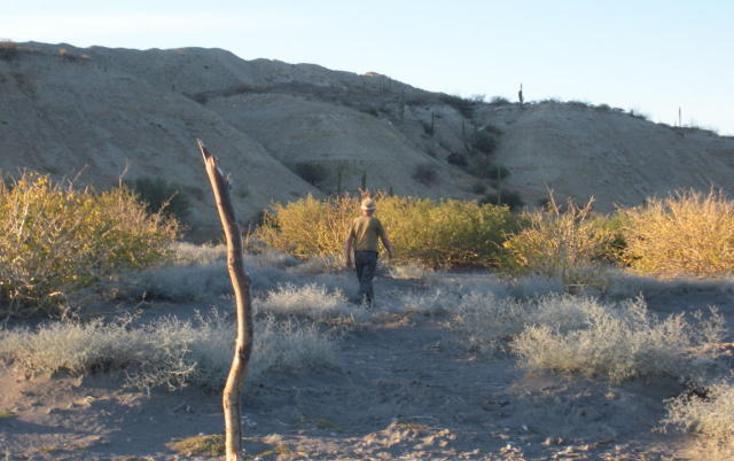 Foto de terreno habitacional en venta en  , comitán, la paz, baja california sur, 1068263 No. 02