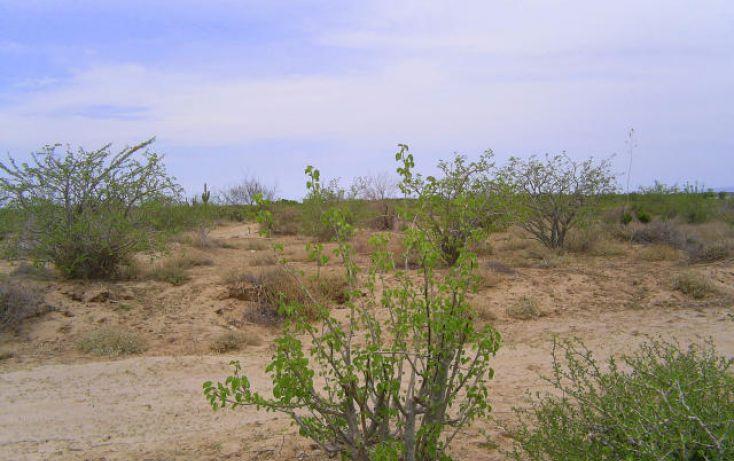 Foto de terreno habitacional en venta en, comitán, la paz, baja california sur, 1083885 no 03
