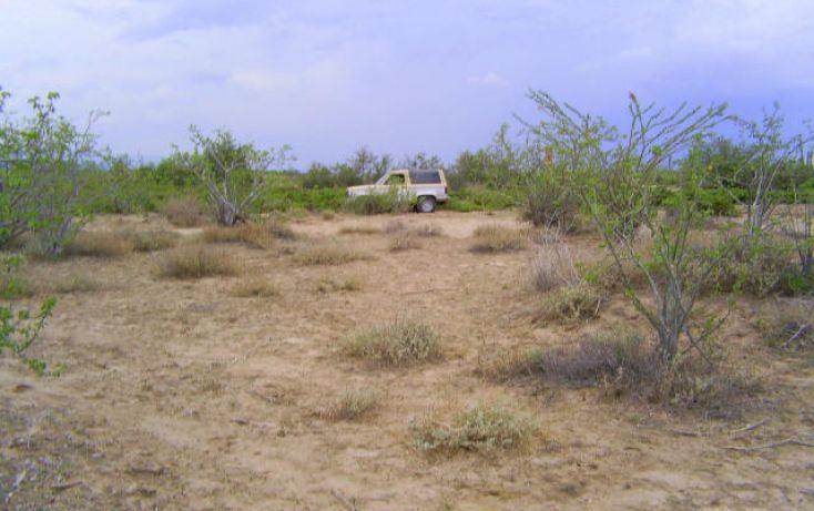 Foto de terreno habitacional en venta en, comitán, la paz, baja california sur, 1083885 no 06