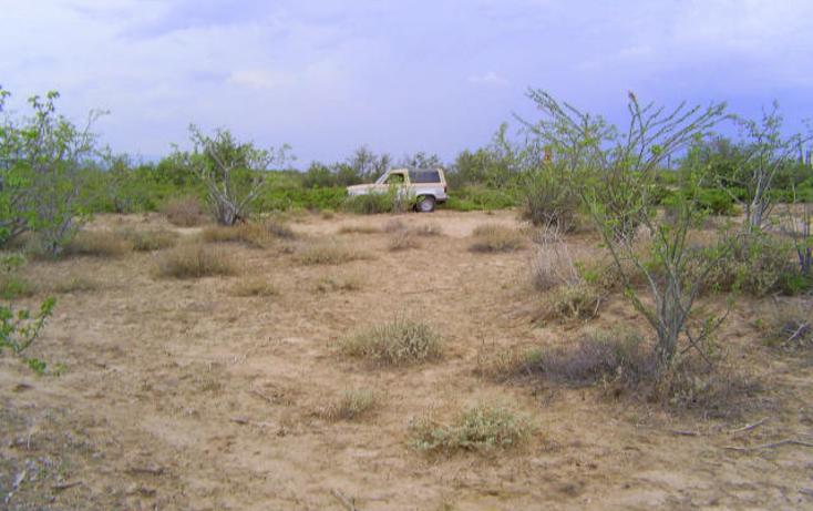 Foto de terreno habitacional en venta en  , comitán, la paz, baja california sur, 1083885 No. 06