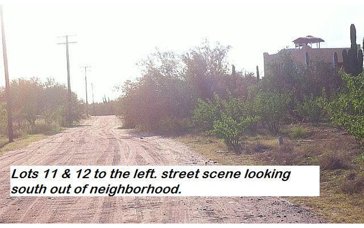Foto de terreno habitacional en venta en  , comit?n, la paz, baja california sur, 1109037 No. 05