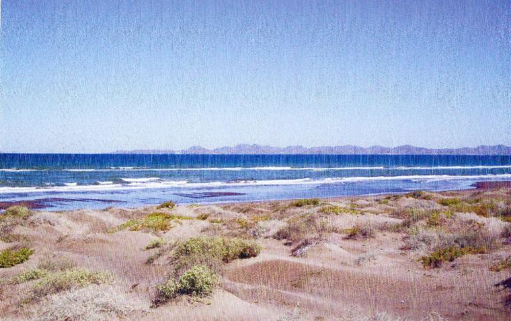 Foto de terreno habitacional en venta en, comitán, la paz, baja california sur, 1207661 no 03
