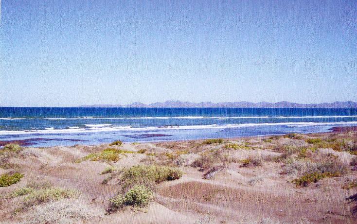 Foto de terreno habitacional en venta en  , comitán, la paz, baja california sur, 1207661 No. 03
