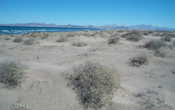 Foto de terreno habitacional en venta en  , comitán, la paz, baja california sur, 1242569 No. 05