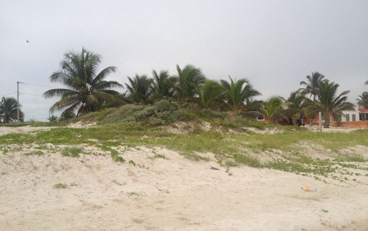 Foto de terreno habitacional en venta en, complejo turistico nuevo yucatán, telchac puerto, yucatán, 1310255 no 03