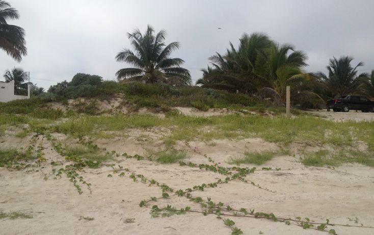 Foto de terreno habitacional en venta en, complejo turistico nuevo yucatán, telchac puerto, yucatán, 1310255 no 04