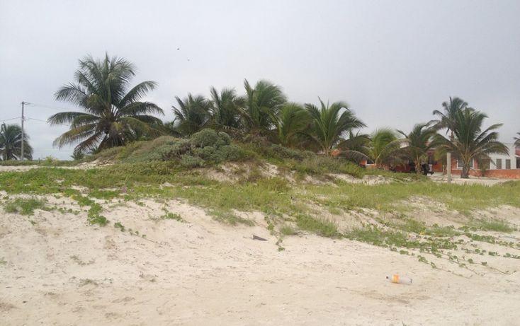 Foto de terreno habitacional en venta en, complejo turistico nuevo yucatán, telchac puerto, yucatán, 1310255 no 05