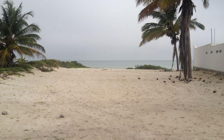 Foto de terreno habitacional en venta en, complejo turistico nuevo yucatán, telchac puerto, yucatán, 1310255 no 06