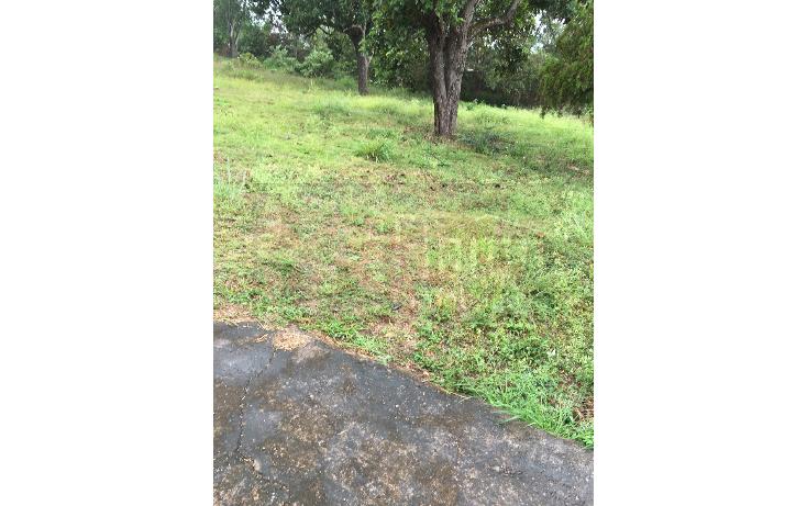 Foto de terreno habitacional en venta en  , compostela centro, compostela, nayarit, 1578798 No. 06