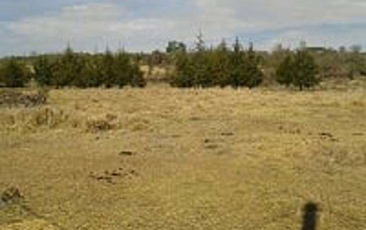 Foto de terreno habitacional en venta en  , concepción de buenos aires, concepción de buenos aires, jalisco, 1831724 No. 04