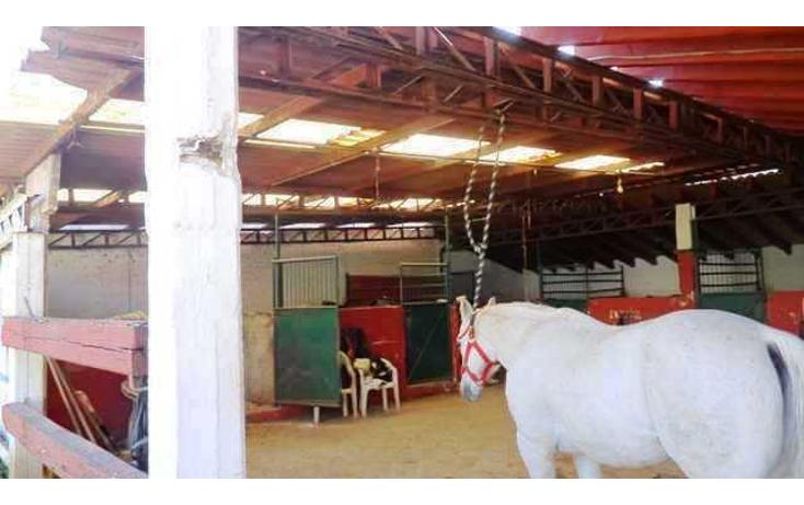 Foto de casa en venta en  , condado de sayavedra, atizap?n de zaragoza, m?xico, 1067873 No. 09