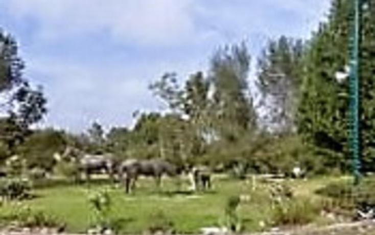 Foto de casa en venta en  , condado de sayavedra, atizapán de zaragoza, méxico, 1488555 No. 07