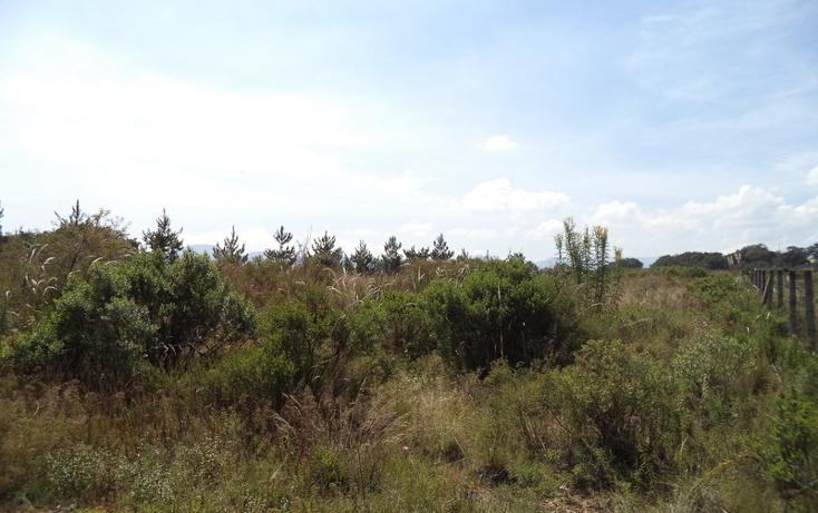 Foto de terreno habitacional en venta en  , condado de sayavedra, atizapán de zaragoza, méxico, 453740 No. 05