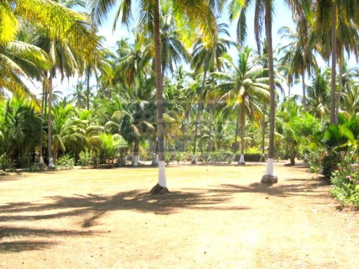 Foto de terreno habitacional en venta en  25, zacualpan, compostela, nayarit, 740789 No. 02