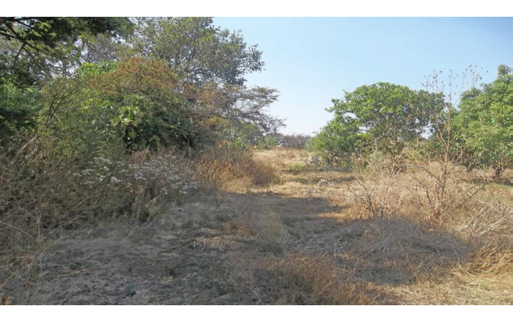Foto de terreno habitacional en venta en  , conjunto tepetlixpa, yautepec, morelos, 1108845 No. 03