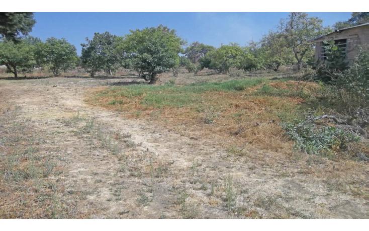 Foto de terreno habitacional en venta en  , conjunto tepetlixpa, yautepec, morelos, 1108845 No. 05