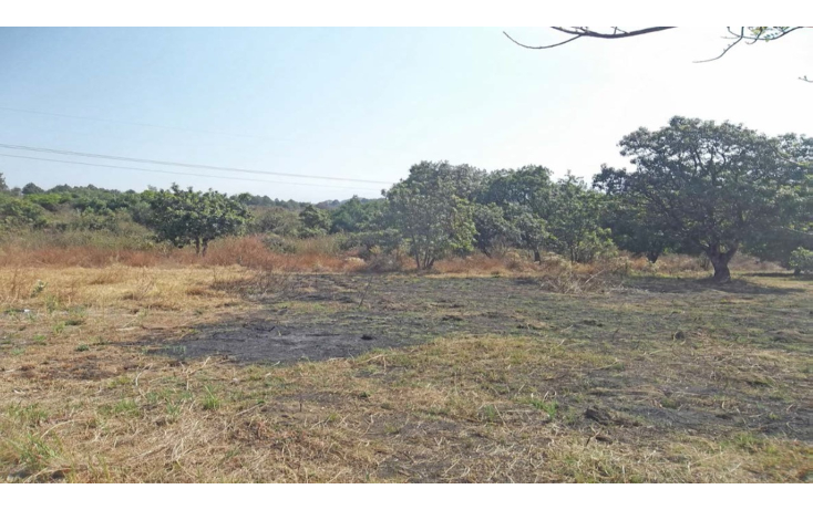 Foto de terreno habitacional en venta en  , conjunto tepetlixpa, yautepec, morelos, 1108845 No. 06