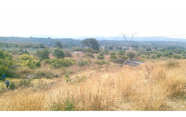 Foto de terreno habitacional en venta en  , conjunto tepetlixpa, yautepec, morelos, 1108845 No. 07