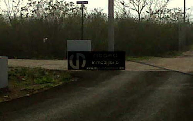 Foto de terreno habitacional en venta en  , conkal, conkal, yucatán, 1047135 No. 06