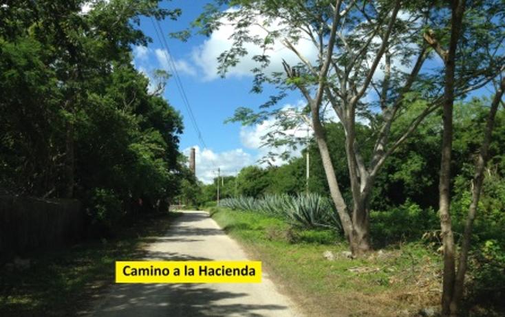 Foto de terreno habitacional en venta en  , conkal, conkal, yucat?n, 1050951 No. 08