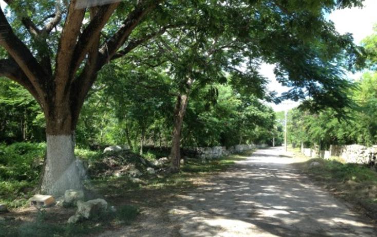 Foto de terreno habitacional en venta en  , conkal, conkal, yucat?n, 1050951 No. 10