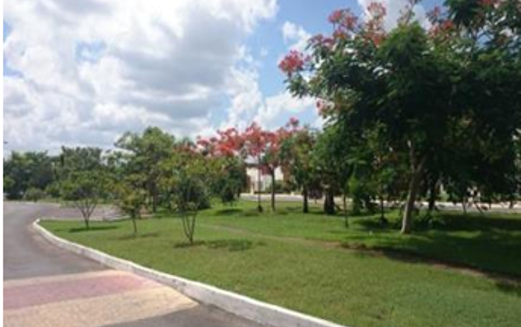 Foto de terreno habitacional en venta en  , conkal, conkal, yucatán, 1068071 No. 07