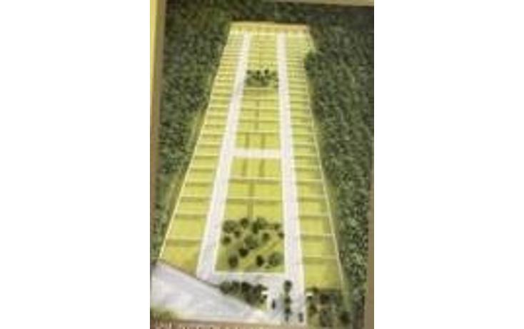 Foto de terreno habitacional en venta en  , conkal, conkal, yucatán, 1070239 No. 02