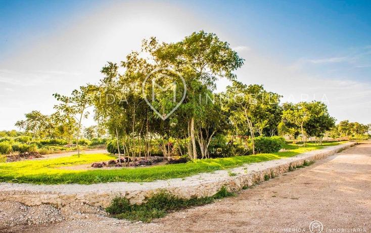 Foto de terreno habitacional en venta en  , conkal, conkal, yucatán, 1073769 No. 05