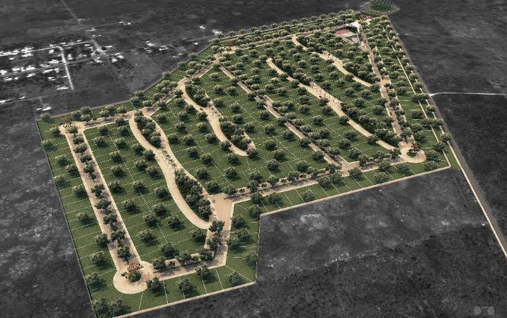 Foto de terreno habitacional en venta en  , conkal, conkal, yucatán, 1105925 No. 04