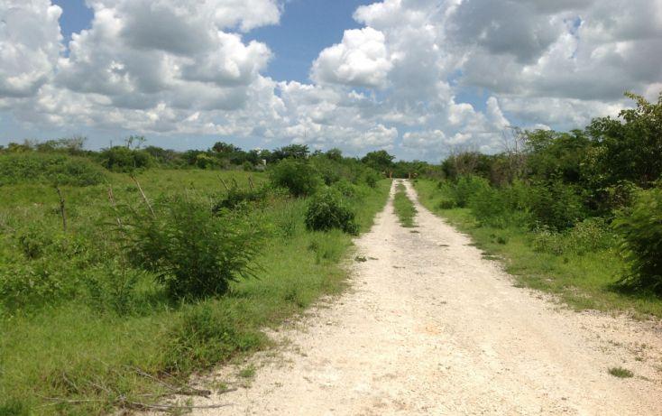 Foto de terreno habitacional en venta en, conkal, conkal, yucatán, 1128349 no 06