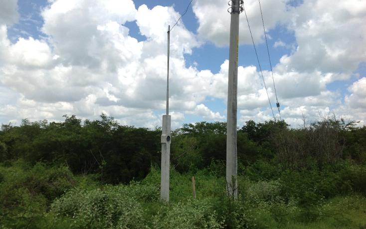 Foto de terreno habitacional en venta en  , conkal, conkal, yucatán, 1128349 No. 07