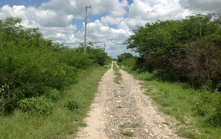 Foto de terreno habitacional en venta en  , conkal, conkal, yucatán, 1128349 No. 09