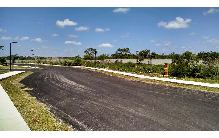 Foto de terreno habitacional en venta en  , conkal, conkal, yucat?n, 1131629 No. 05