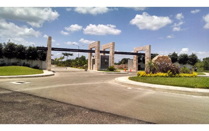 Foto de terreno habitacional en venta en  , conkal, conkal, yucat?n, 1133121 No. 04