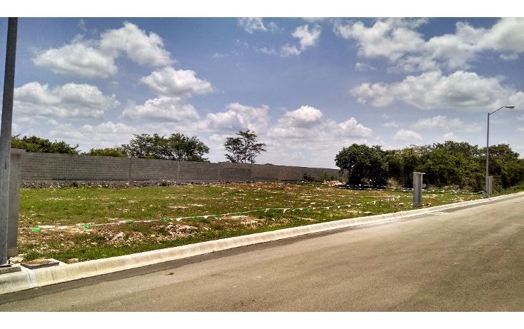 Foto de terreno habitacional en venta en  , conkal, conkal, yucat?n, 1133121 No. 06