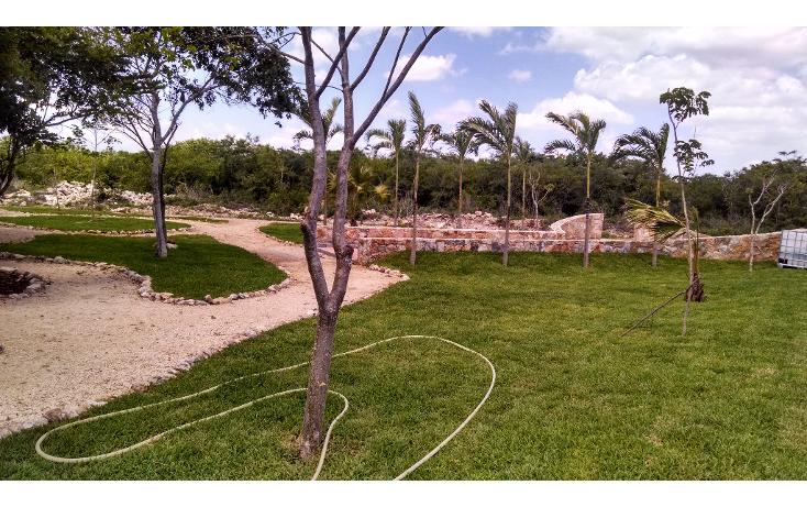 Foto de terreno habitacional en venta en  , conkal, conkal, yucat?n, 1133121 No. 08