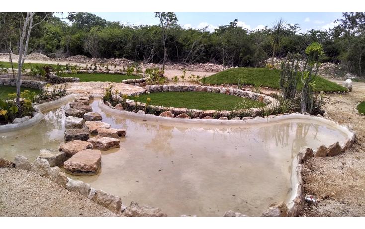 Foto de terreno habitacional en venta en  , conkal, conkal, yucat?n, 1133121 No. 09