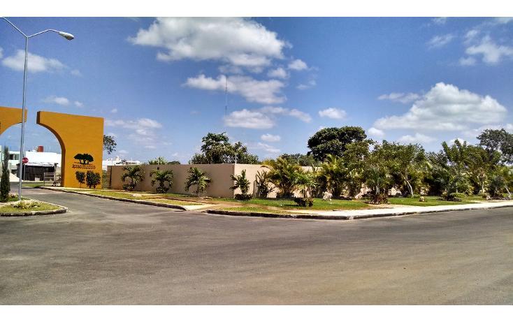 Foto de terreno habitacional en venta en  , conkal, conkal, yucatán, 1137851 No. 03