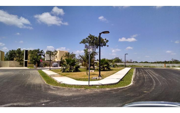 Foto de terreno habitacional en venta en  , conkal, conkal, yucatán, 1137851 No. 05