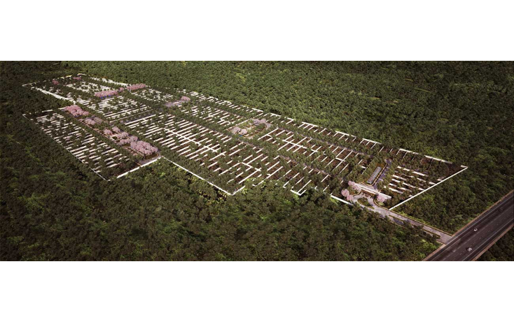 Foto de terreno habitacional en venta en  , conkal, conkal, yucat?n, 1140851 No. 07