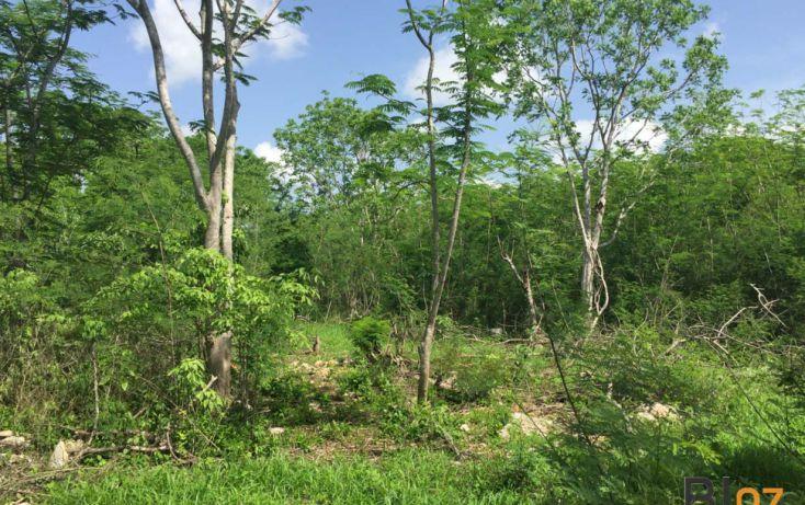 Foto de terreno habitacional en venta en, conkal, conkal, yucatán, 1168663 no 03
