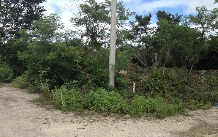 Foto de terreno habitacional en venta en  , conkal, conkal, yucatán, 1178939 No. 01
