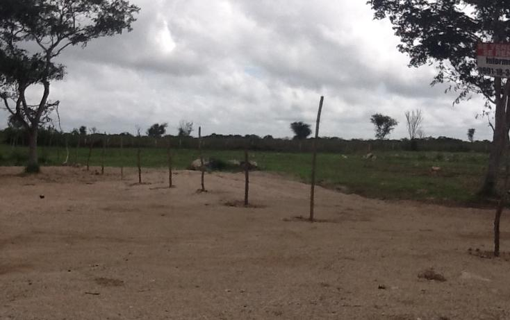 Foto de terreno habitacional en venta en  , conkal, conkal, yucatán, 1183139 No. 01