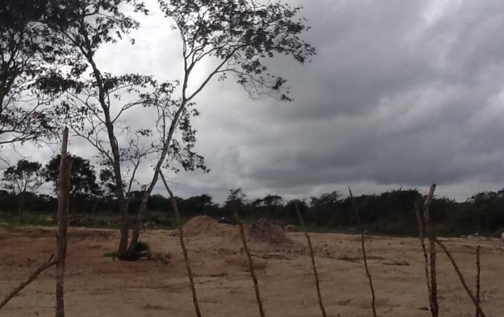 Foto de terreno habitacional en venta en  , conkal, conkal, yucatán, 1183139 No. 02