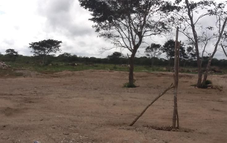 Foto de terreno habitacional en venta en  , conkal, conkal, yucatán, 1183139 No. 03