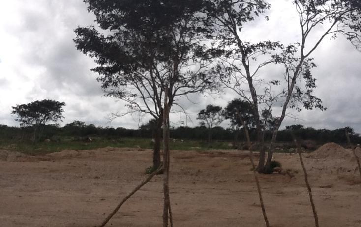 Foto de terreno habitacional en venta en  , conkal, conkal, yucatán, 1183139 No. 04