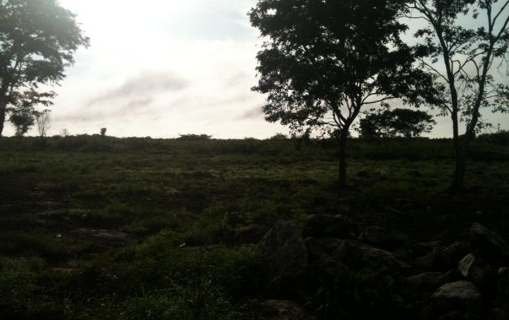 Foto de terreno habitacional en venta en  , conkal, conkal, yucatán, 1183139 No. 05