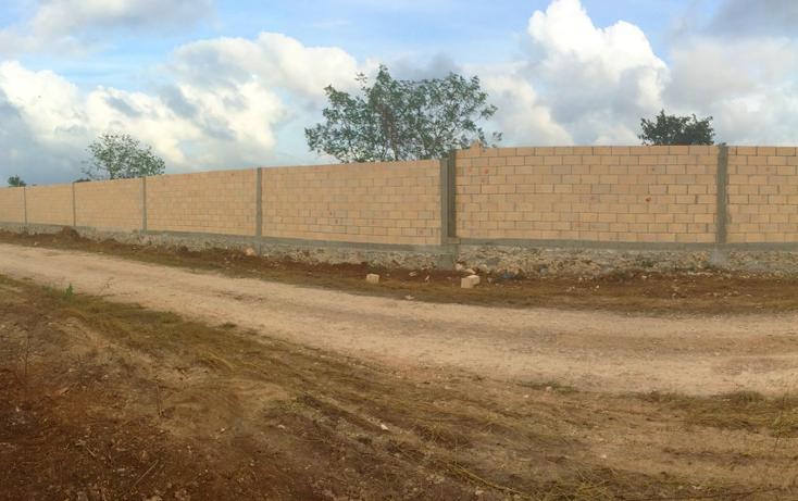 Foto de terreno habitacional en venta en  , conkal, conkal, yucatán, 1183203 No. 16